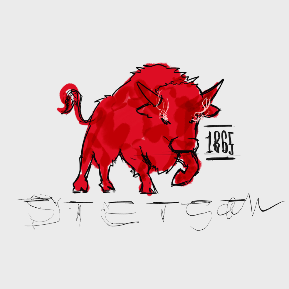 STETSON BISON ILLUSTRATION LOGO SKETCH